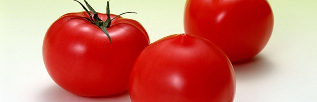 New Test results for Tomatoes!